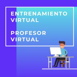 Entrenamiento_profesorvirtual