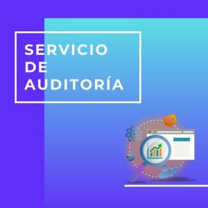 Servicio de auditoria en Marketing Digital